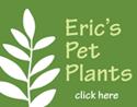 Eric's Pet Plants