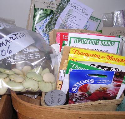 seed-basket.jpg