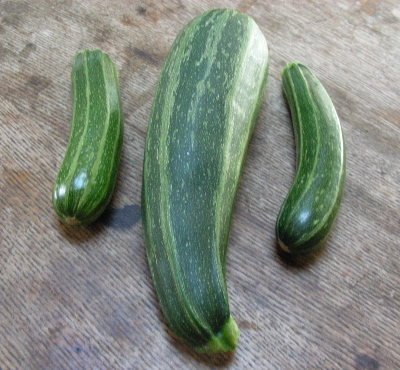 big-and-little-zukes.jpg