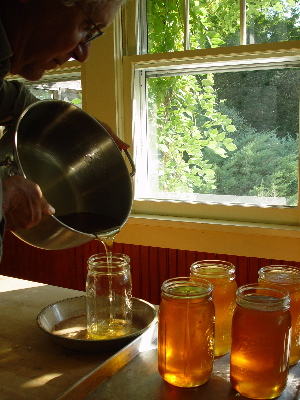9-honey-into-jars.jpg
