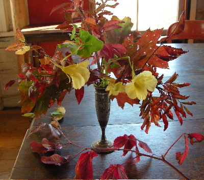 nasturtium-leaf-bouquet.jpg