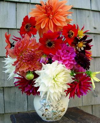 dahlia-bouquet-07.jpg