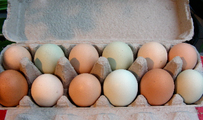 ilanas-eggs.jpg