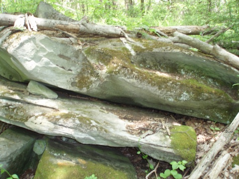limestone outcropping