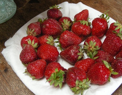 strawberries for shortcake
