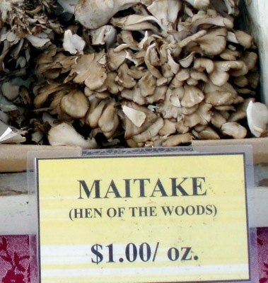 Maitake often sells for $15 -$20 a pound