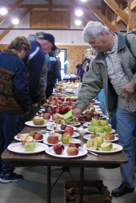Somewhere well north of 50 apple varieties laid out for tasting.