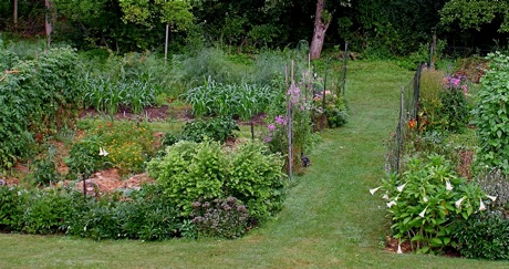Vegetable Gardening For Smarties Not Dummies Leslie Land In Kitchen And Garden And All