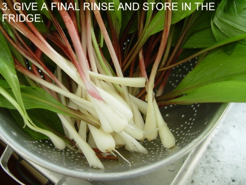 ramps prepared for cooking