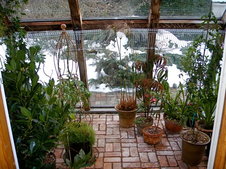 Greenhouse From The Kitchen