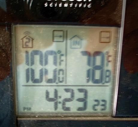 thermometer showing 100 degrees