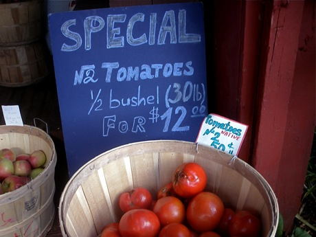 farmstand tomatoes