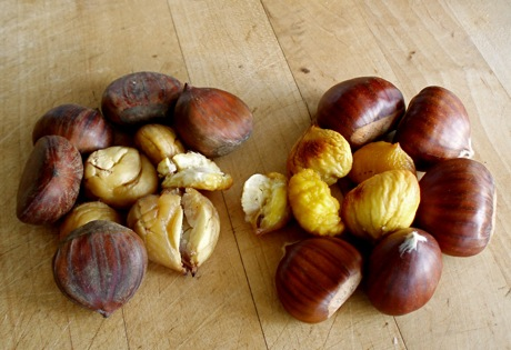 conventional and marroni chestnuts
