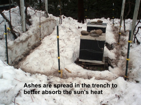 dark ashes on snow in fence trench