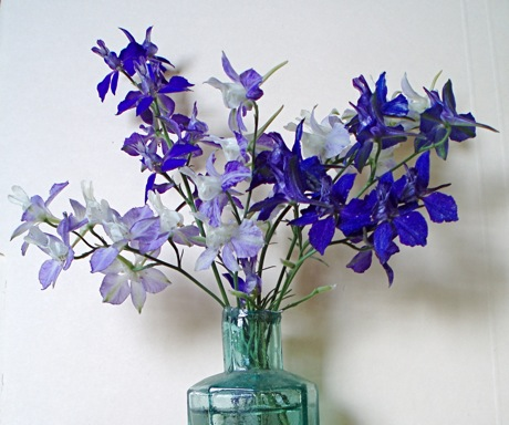 blue larkspur bouquet