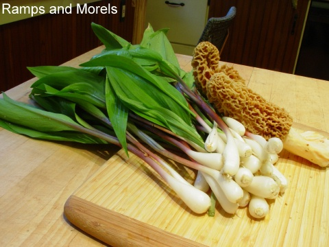 ramps and morels prepared for cooking
