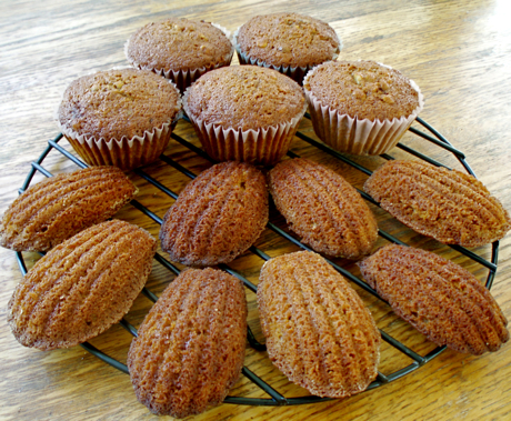 gingerbread cupcakes and madeleines