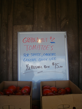farm stand tomato sale sign
