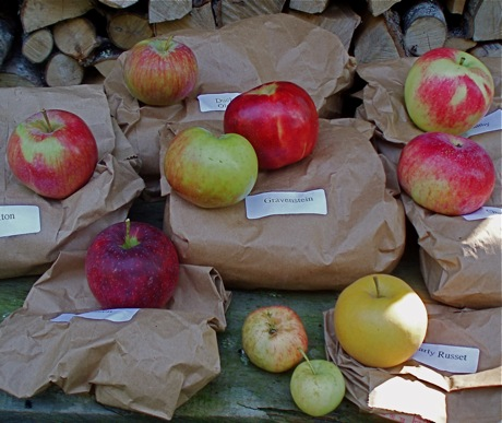 heirloom apples on labeled bags