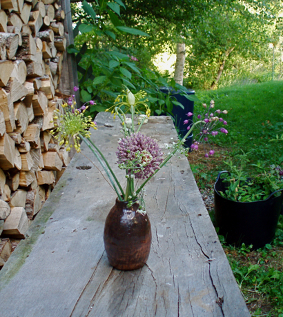 alliums on table/movable objects